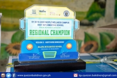 Delapa Integrated School Regional Champion sa Nestle Wellness Campus Best Implementing School - High School Category sa Tibuok Region 10 001